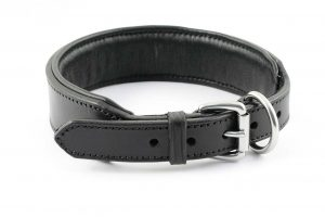 Collare largo con imbottitura e ricamo personalizzato adatto a cani di grossa taglia.